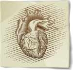ist2_8590098-vintage-heart-sketch-on-paper