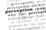 9495499-perception-the-dictionary-project-macro-shots-shallow-d-o-f